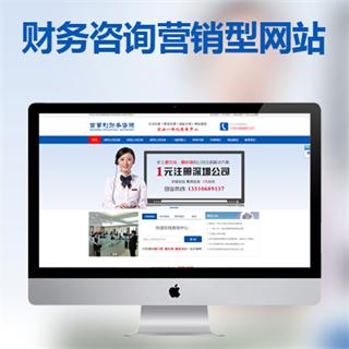 财务咨询营销型网站